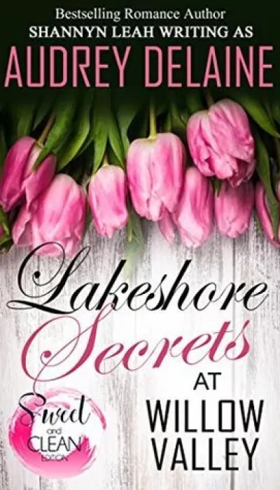 Lakeshore Secrets at Willow Valley by Audrey Delaine – Review