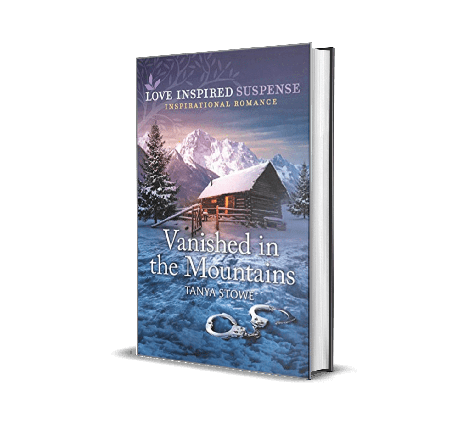 Vanished in the Mountains