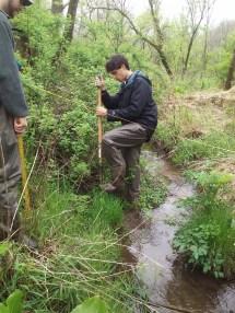 Hydric soil?