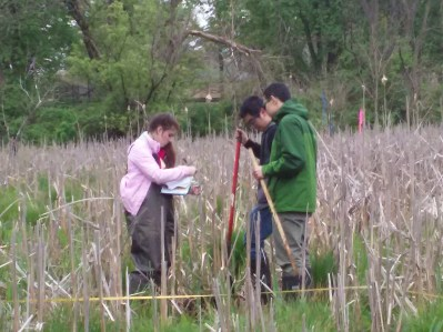 Collecting data along upland-wetland transects.