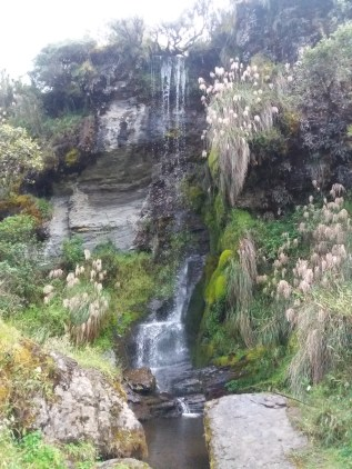 Close up picture of the waterfall at Leguna Negra