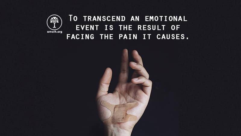 Pain Path Transcendence - Blog