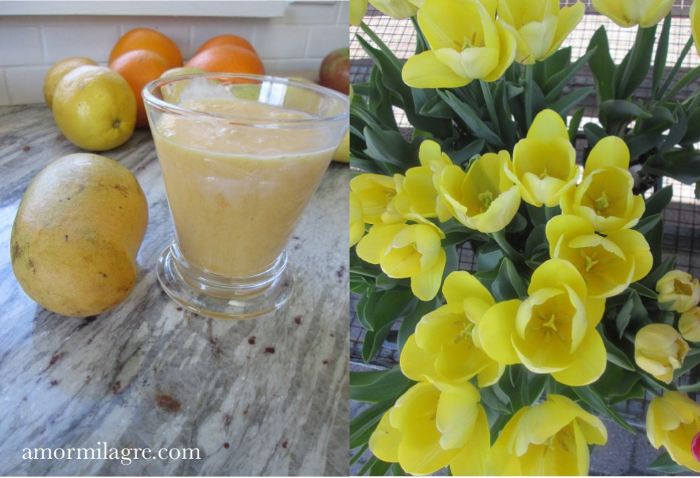 Mango Mamma and Baby Mango Smoothie and Fresh Sliced Mango Snack Recipe and Photography by amormilagre.com Organic Recipes, Vegan, Healthy. Artwork, Stationery, Organic Apparel, and Custom Gifts. natural antioxidant drink, anti-cancer foods. spring tulips flowers.