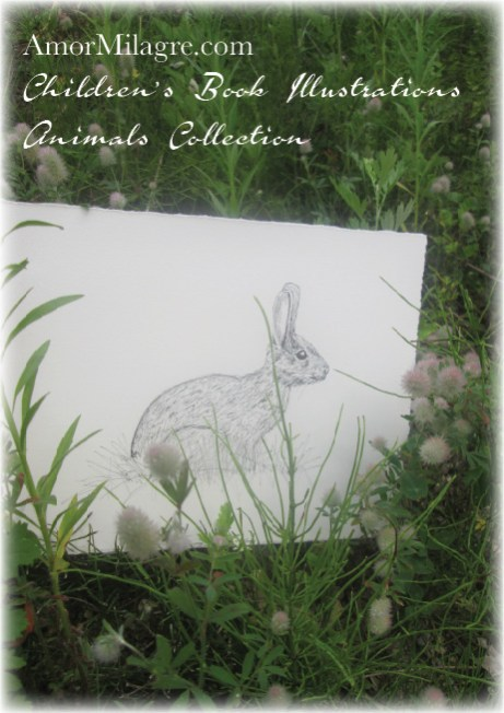 Amor Milagre Ink Bunny Rabbit in the Grass The Shop at Dove Cottage Children's Book Illustrations beautiful for all spaces and ages, especially in a nursery amormilagre.com