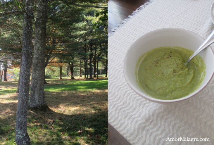 Amor Milagre:  Sweet Green Soup Recipe and Photography by amormilagre.com Organic, Vegan Vegetarian, Plant-based, Healthy. Artwork, Stationery, Organic Apparel, and Custom Gifts. Baby and Me Meal Snack, Garden, Maine coast, beach, shore, seaside, ocean, autumn walk trees, New England in the Fall, roasted asparagus, steamed peas and corn, organic toddler food