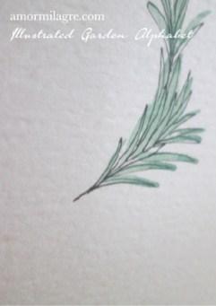 Illustrated Garden Alphabet Letter N-d Amor Milagre amormilagre.com