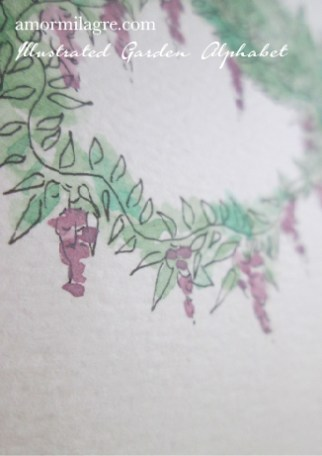 Illustrated Garden Alphabet Letter O-d Amor Milagre amormilagre.com