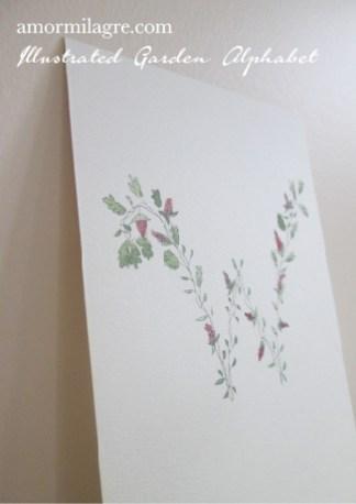 Illustrated Garden Alphabet Letter W Amor Milagre amormilagre.com