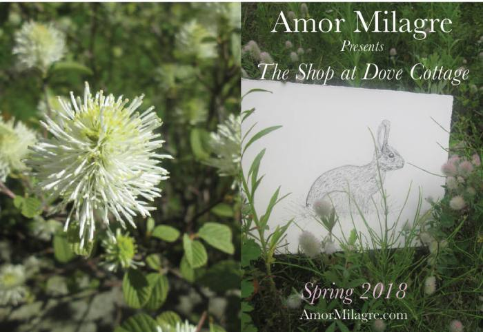 Amor Milagre Shop Homepage Sale 5 Spring 2018 Art Design Organic Life Apparel Baby amormilagre.com