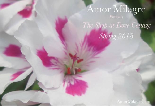 Amor Milagre Shop Homepage Sale 6 Spring 2018 Art Design Organic Life Apparel Baby amormilagre.com