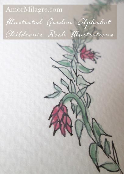 Amor Milagre Illustrated Garden Alphabet Letter Q 1 amormilagre.com