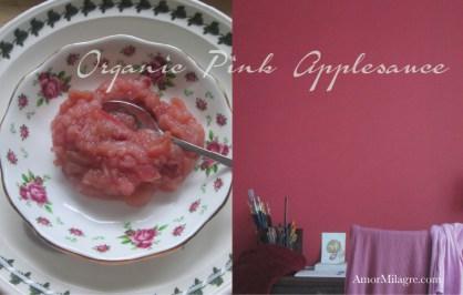 Amor Milagre Cozy November, Pink Applesauce Organic Vegan Non-Toxic Recipe & Apparel Girls Organic Cotton Nightgown amormilagre.com
