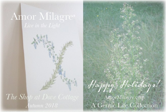 Amor Milagre Holiday Sale banner 2018 Artisan handmade Gifts Baby & Child Collection Art Design Books Organic Apparel Organic Cotton Toddler Tees Nursery Watercolor Paintings amormilagre.com