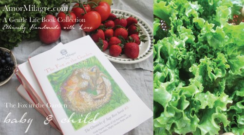 Amor Milagre Presents The Fox in the Garden ethical organic original children's book amormilagre.com nursery bookshop bunny blueberries vegetables vegan lettuce no dig garden