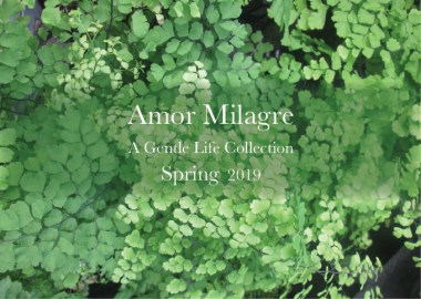 Amor Milagre Ethical Spring Collection primavera plants 2019 Custom Design Art Gallery Organic Vegan Gifts Baby & Child amormilagre.com