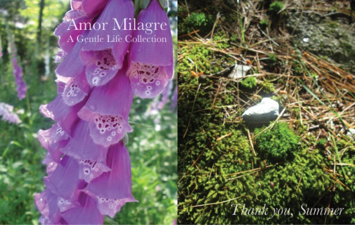 Amor Milagre Colour Mood Late Summer Days Thank you, Summer 2019 Ethical Organic Gift Shop Handmade Gift Shop Art Baby & Child foxglove flower moss cottage garden amormilagre.com