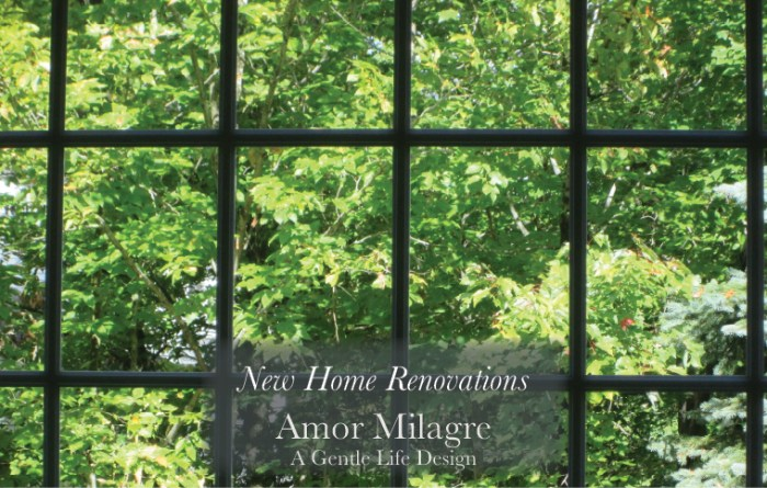 Amor Milagre New Home Renovation Design Diaries 1st Dusty Days 2019 Ethical Organic Gift Shop Handmade Gift Shop Art large windows trees amormilagre.com