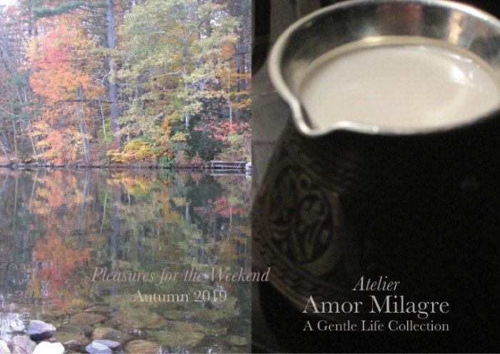 Amor Milagre Shop Pleasures for the Weekend Autumn Trees Reflection Water Lake Vegan Hot Chocolate Cocoa Fall Interior Decor 2019 Ethical Gift Shop amormilagre.com