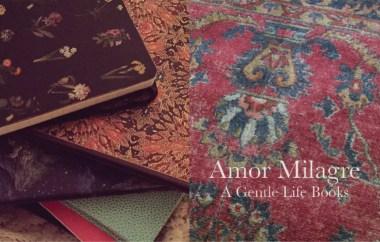 Amor Milagre Home Renovation Design Diaries Living Room Light & Colour Books Novel Series Interior Design Ethical Gift Shop amormilagre.com