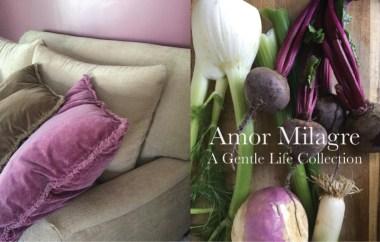 Amor Milagre Home Renovation Design Diaries Living Room Light & Colour Organic Vegan Interior Design Ethical Gift Shop amormilagre.com