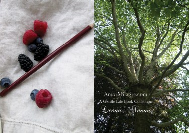 Amor Milagre Presents Leona's Nonna 1st Summer Festival The Love Letter Diaries #1 ethical book series tree berries amormilagre.com