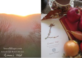 Amor Milagre Presents Leona's Wish 1st Autumn Festival The Love Letter Diaries #2 ethical book series amormilagre.com 4