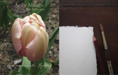 Amor Milagre Compassionate Spring Garden Rose Cottage 2020 Ethical Organic Gift Shop amormilagre.com