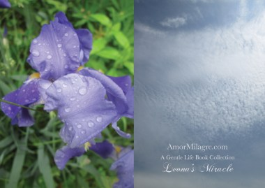 Amor Milagre Leona's Miracle 1st Spring Festival The Love Letter Diaries #4 ethical book series amormilagre.com 21
