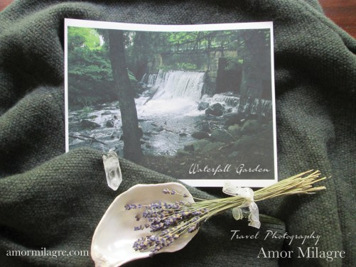 Amor Milagre Waterfall Garden Travel Photography Nature Art Print amormilagre.com 1