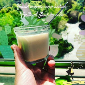 yaourt-maison-sans-lactose-vanille-fleur-de-coco-amoureusedunetarteaucitron
