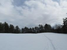 snowyhillwithtreesandcloudskhnp22Feb2014