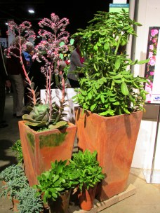 Container Garden Invitational: succulents in container garden by Snug Harbor Farm