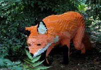 LegofoxbGinterRichmond17July2016