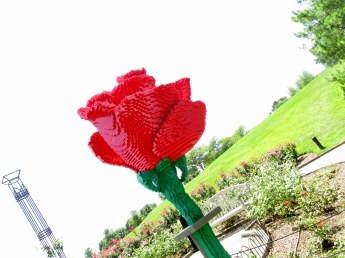 LegoredroseartshotGinterRichmond17July2016