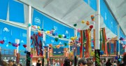 WhatsApp Image 2017-06-17 at 13.56.27