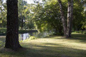 Sommerlicher Spaziergang an der Amper - Nähe Gröbenzell, Olching, FFB