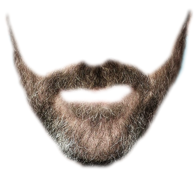 Beard Simulator