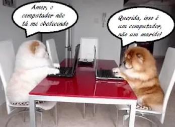 memes engraçados de animais caes no facebook