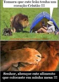 O leão na cabana do home