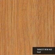 VNAGT-SOUL-152X914-01