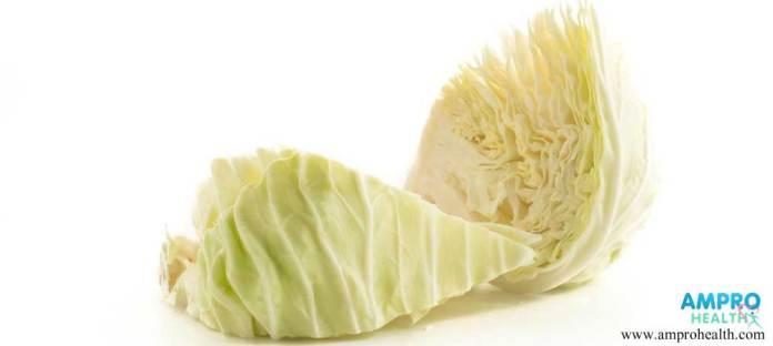 ประโยชน์ของกะหล่ำปลี (Cabbage)