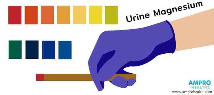 การตรวจปัสสาวะหาค่า Urine Magnesium