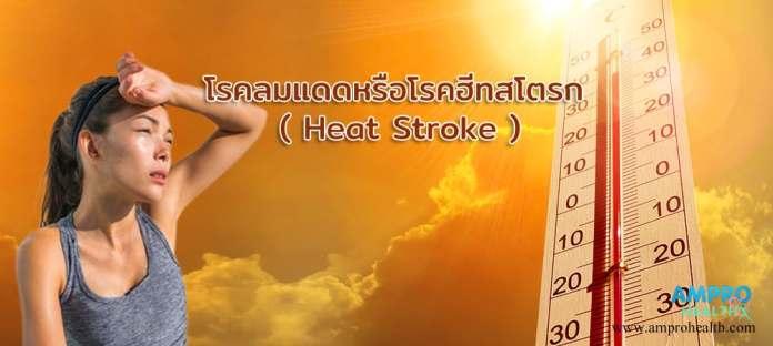 โรคลมแดดหรือโรคฮีทสโตรก ( Heat Stroke )