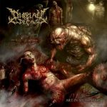 Display Of Decay – Art In Mutilation