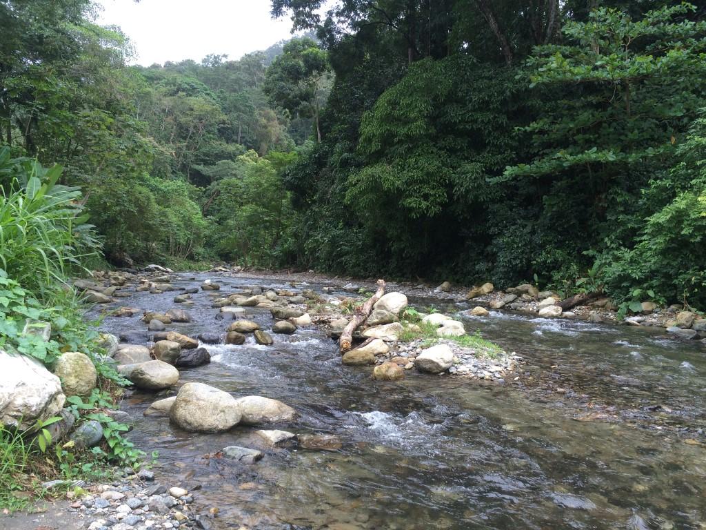 Rios presentes en a Cuenca del Rio Tulian. Comunidad del Rio.