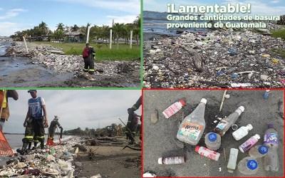 Gracias a la rápida respuesta de los equipos de limpieza, tenemos playas limpias.