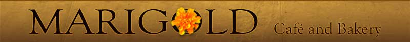 marigold_layout_header_logo_over