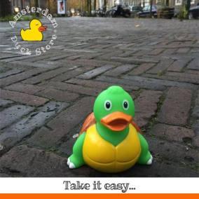 Turtle rubber duck Amsterdaam Zuid Amsterdam Duck Store