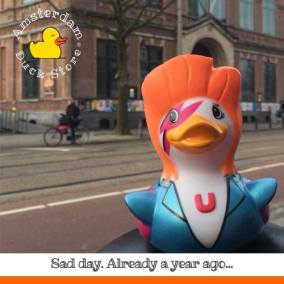 Zig rubber duck Bowie Paradiso Amsterdam Duck Store
