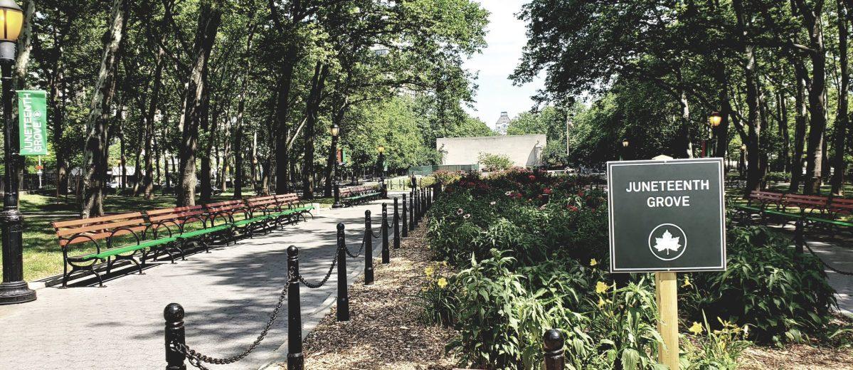 Juneteenth Grove (294299)